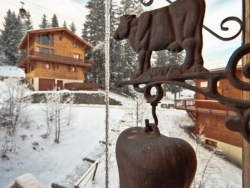 Welcoming Chalet Juliette in La Tania for up to 14