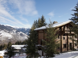 Attractive Chalet Christine in La Tania for up to 28