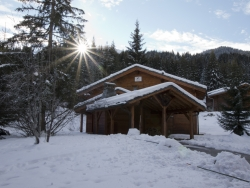 Charming Chalet Lea in La Tania for up to 12