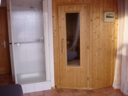 Sauna and adjoining shower