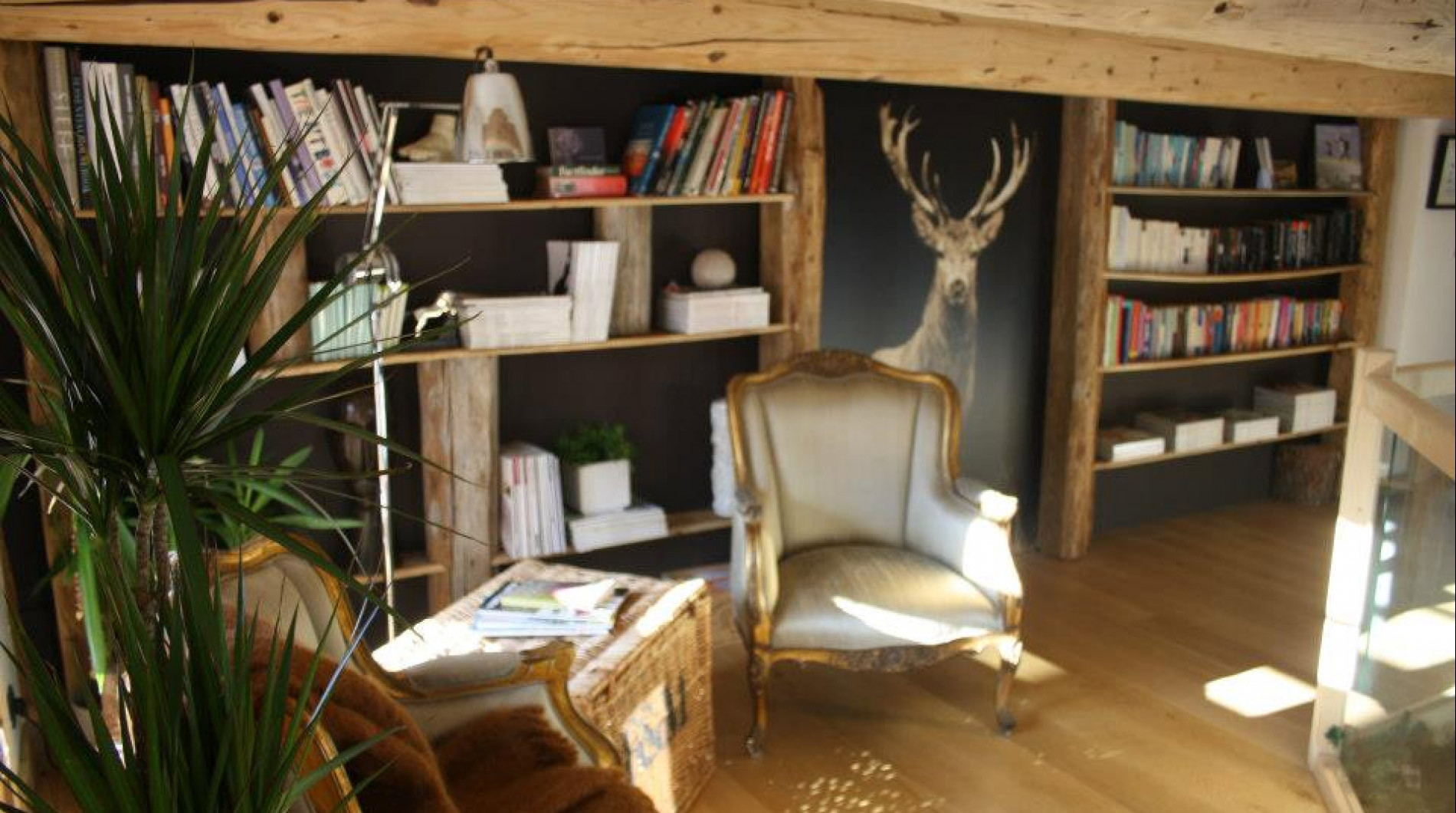 Our relaxing library area